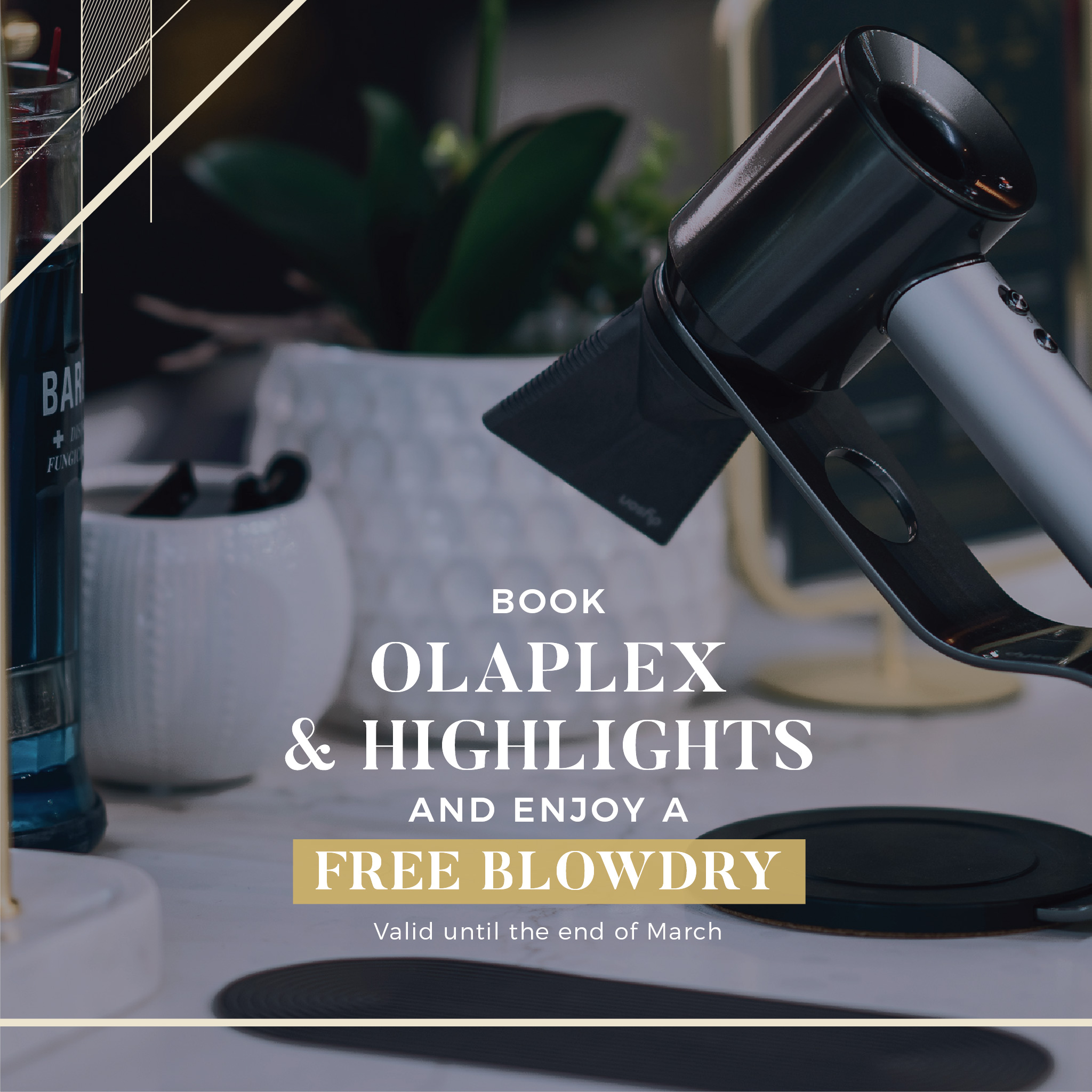 Palmerston North Hair Salon March 2021 Free Blow Dry Offer Image